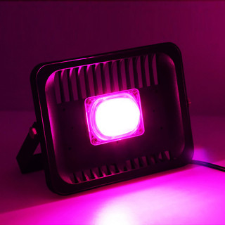 Фитопрожекторы